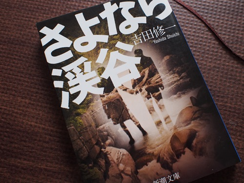 映画「さよなら渓谷」原作小説の感想ネタバレあり「二人は幸せになれないのか」