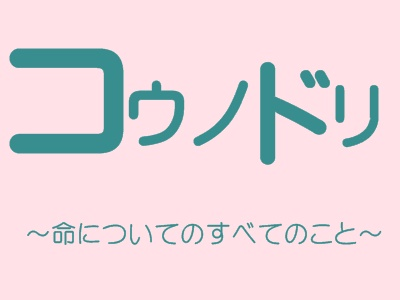 泣ける「コウノドリ」原作漫画の感想とあらすじ(ネタバレあり)