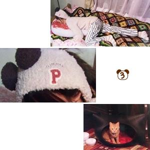 【ぱんだヘアバンドや猫ベッドなど】ミチコ(深田恭子さん)着用衣装&グッズ。ダメな私に恋してください、3話