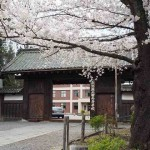 桜が満開!長野県上田市「上田藩主居館跡」高等学校の校門