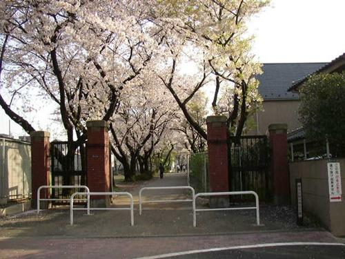 「櫻子さんの足下には死体が埋まっている」ロケ地&目撃情報・千葉県・幕張・八王子