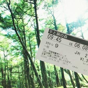 映画「羊と鋼の森」あらすじと感想(ネタバレ含みます)