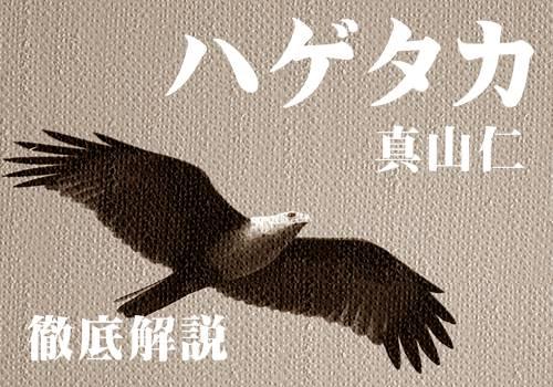 正義の結末「ハゲタカ」原作小説のネタバレ・あらすじ徹底解説